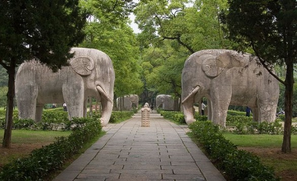 Elephants along the Sacred Way